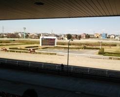 浦和競馬場1