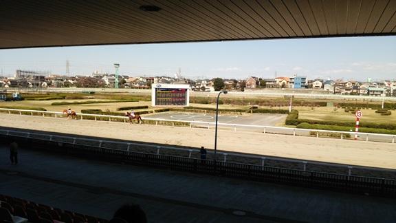 久しぶりに浦和競馬場へ行ってきました。